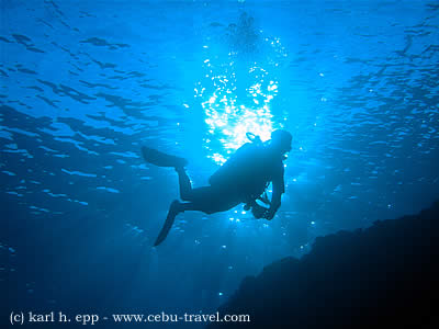 a diver in the philippines diving tubbataha